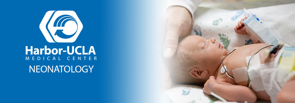 Neonatology/Perinatal Fellowship - Harbor-UCLA Medical Center