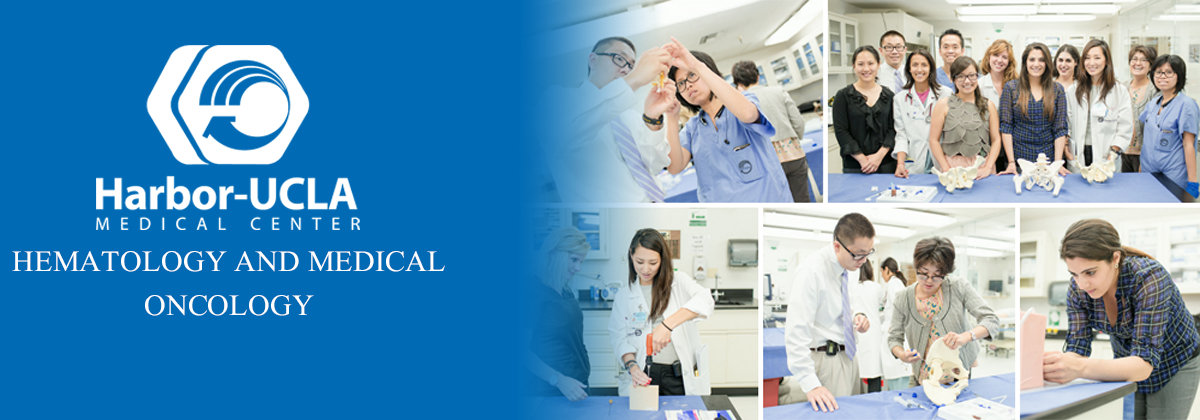 Harbor-UCLA Medical Center | Level 1 Trauma Center | Teaching Hospital | Medical Residency & Fellowships | Medical Education| Los Angeles Department of Health Services | LA Health Service Agency